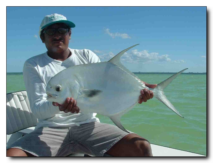 56 Permit in ONE WEEK in the Punta Pajaros Cay, Mexico