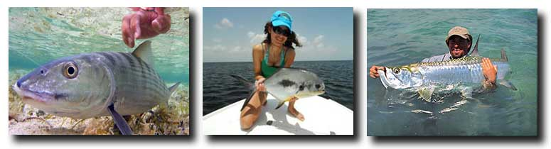 Grand Slam Season is Your Best Chances to Land the Big Three: Bonefish, Permit, and Tarpon