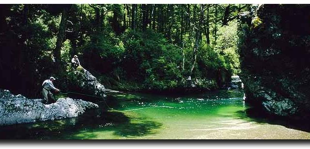 New Zealand: Gin Clean Water and Big Trout Fishing