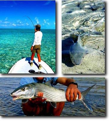 World Class Bahamas Bonefishing in South Andros Island, Bahamas