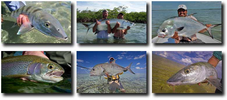 Fall Fishing Bonanza: Deals & Cancellations, Rested Flats, and Your Best Shot at a Grand Slam