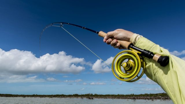 Fishing in Cuba Now Legal!
