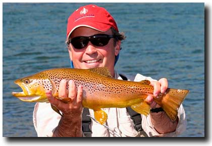 Alberto Cordero with a nice brown trout!