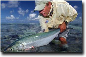 Alphonse Island Fishing Company