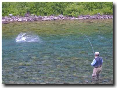 Camp Bonaventure Guest hooked up to an Atlantic Salmon