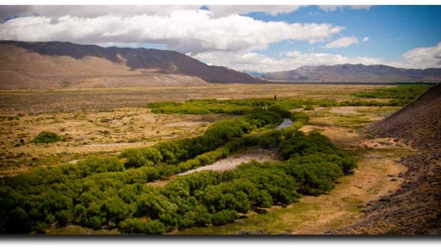 Chubut River Float: Unspoiled Trout Fishing in Patagonia, Argentina