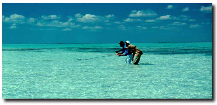 Andros Special: Single Rooms at Bargain Price & Free Trip with a 12-pound Bonefish!