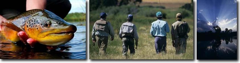 Nice Five Rivers Brown Trout; Five Rivers' Fishing Guests; Montana Sun.