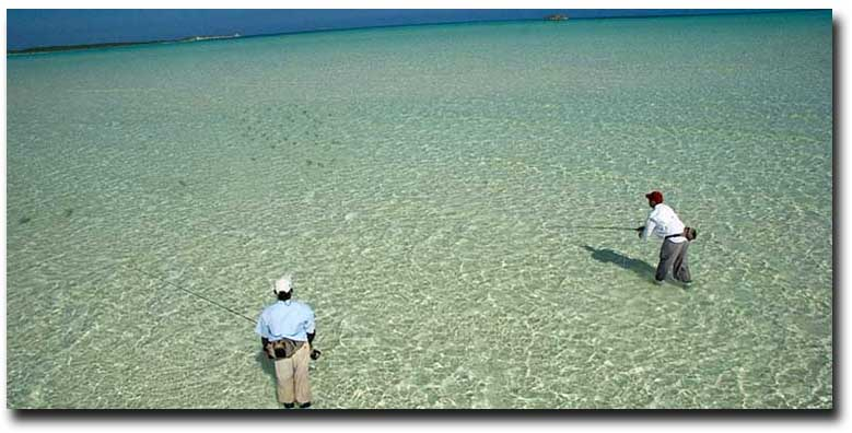 Wading the Flats: The Next Step - a collection of our best articles to up your wading game