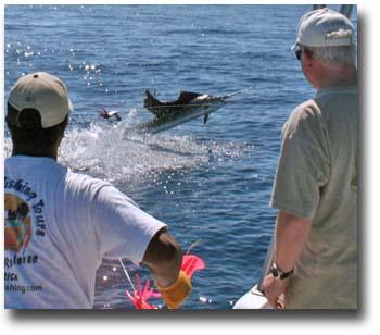 JP Sportfishing