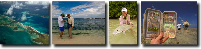 Los Roques/Sight Cast Sportfishing