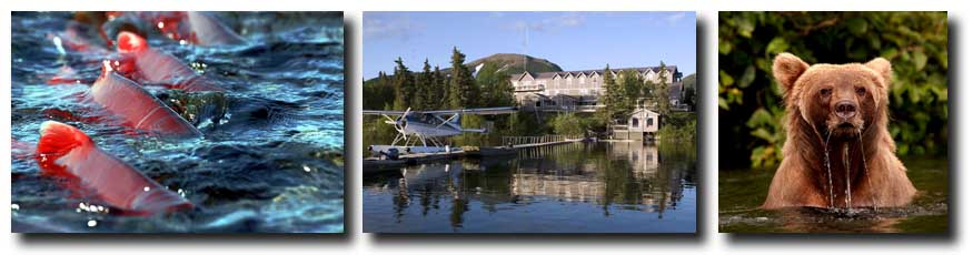 L to R: Mission Lodge Coho Salmon (Sockeye Salmon); Mission Lodge View from Lake Aleknagik; Mission Lodge Bear, a common Alaskan Fishing sight.