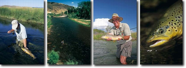 Brian O'Keefe Photos - World Class Montana Trout Fishing on the Beaverhead, Ruby and Big Hole Rivers.