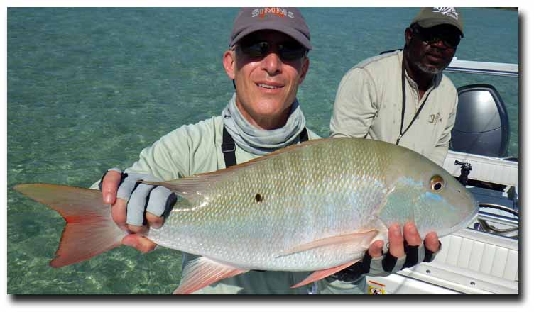 Summer in the Bahamas: Light Winds, Less Pressure, Great Fishing!