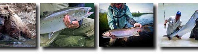 Super Summertime Fishing: Alaska, Montana, Iceland, Quebec, Labrador, Mexico